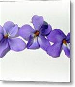 Sweet Violet Metal Print