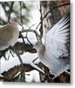Sweetness In The Trees Metal Print