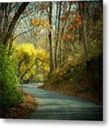 Swift Shoal Road Metal Print by Joyce Kimble Smith