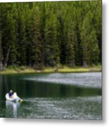 Swiftcurrent Lake Many Glacier Montana Metal Print