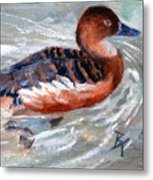 Swimming Aceo Metal Print