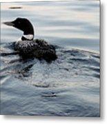 Swimming Away Metal Print