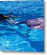 Swimming Mermaid Metal Print