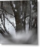 Swirling Into Winter Metal Print