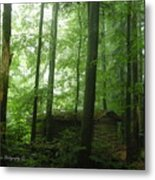 Swiss Forest Cabin Metal Print