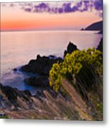 Sycamore Cove After Sunset Metal Print
