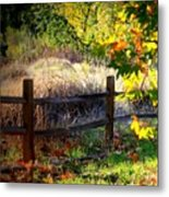 Sycamore Grove Fence 1 Metal Print