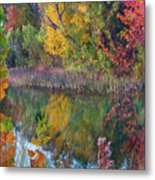 Sycamores And Willows Metal Print
