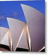 Sydney Harbor Fins Metal Print