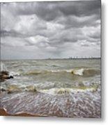 Sylvan Park Beach Metal Print