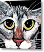 Tabby Eyes Metal Print