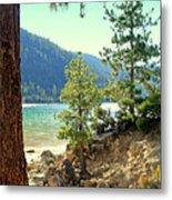 Tahoe Pines Metal Print