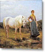Taking A Horse To Water Metal Print