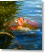 Tale Of The Wild Koi 2  Metal Print
