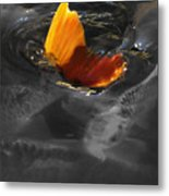 Tale Of The Wild Koi 3 Metal Print