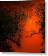 Talking Trees Of Night Metal Print