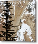 Tall And Deep Metal Print
