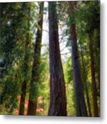 Tall And Mighty Metal Print