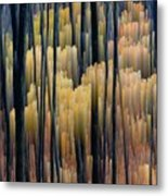 Tall Forest 2 Metal Print