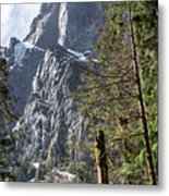 Tall Mountain Peaking Behind Pacific Northwest Forest Trees Metal Print