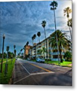 Tall Palms Metal Print