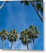 Tall Palms Meet The Sky Metal Print