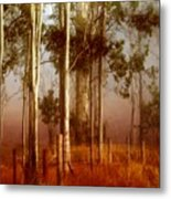 Tall Timbers Metal Print