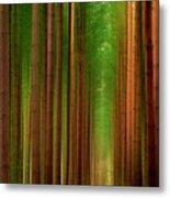 Tall Trees Metal Print