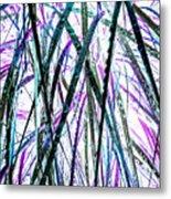 Tall Wet Grass Metal Print