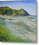 Tallows Beach Byron Bay Northern Nsw Australia 2002  Metal Print