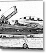 Talon Vs. Hornet Metal Print