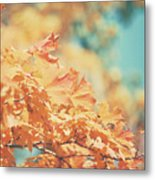 Tangerine Leaves And Turquoise Skies Metal Print
