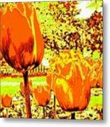 Tangerine Tulips Metal Print