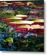 Tapestry Of Color And Light Metal Print