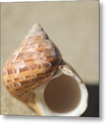Tapestry Turban Seashell Metal Print