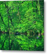 Tar River Reflection Metal Print