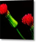 Tassel Flower Metal Print
