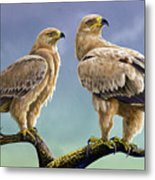 Tawny Eagles Metal Print