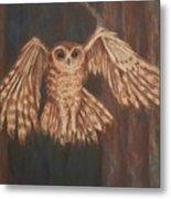 Tawny Owl In Flight Metal Print