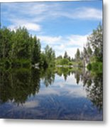 Taylor Creek Reflections Metal Print