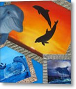 Taylors Dolphins Metal Print