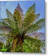 Te Puia Palm Tree Metal Print