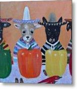 Teacup Chihuahuas In Mexico Metal Print