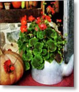 Teapot Filled With Geraniums Metal Print