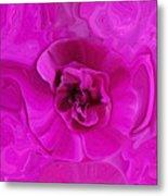 Teapot Rose Metal Print