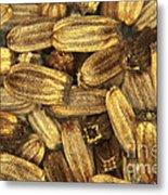 Teasel Seeds Metal Print