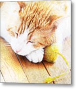 Teddy And His Toy Metal Print