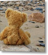 Teddy On A Beach Metal Print