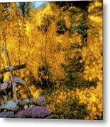Telluride Spirituality - Colorado - Autumn Aspens Metal Print