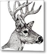 Ten Point Buck Metal Print